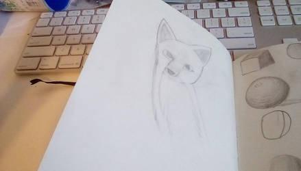 Fox by SomeSprite