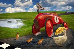 Duck-walk by svaniland