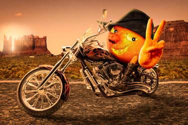 Orange-Rider by svaniland