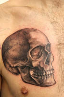 a skull by graynd