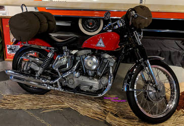 Then Came Bronson Sportster 3 of 3 by Caveman1a