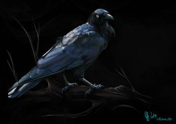 Raven by Photoshoplovingraven