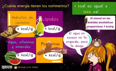 Energia en los nutrimentos by Mochuelitofriki