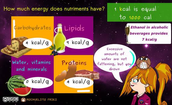 Energy in nutriments by Mochuelitofriki