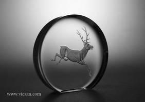 Deer by Viczan