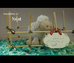 HAPPY EID ..A9'7A EID.. by j0oj0o