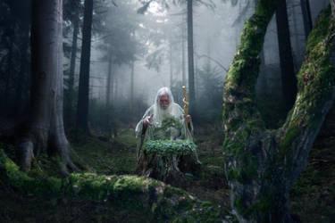Hermit by Zazza83