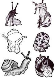 Sketches: snails by nancy-kelpie