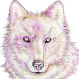 LiuTze89's Profile Picture