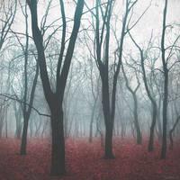 Reincarnation of the Fallen Souls by LevAni11