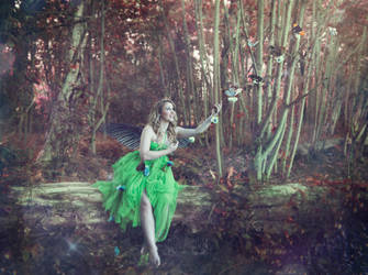 In the forest by melinahollway