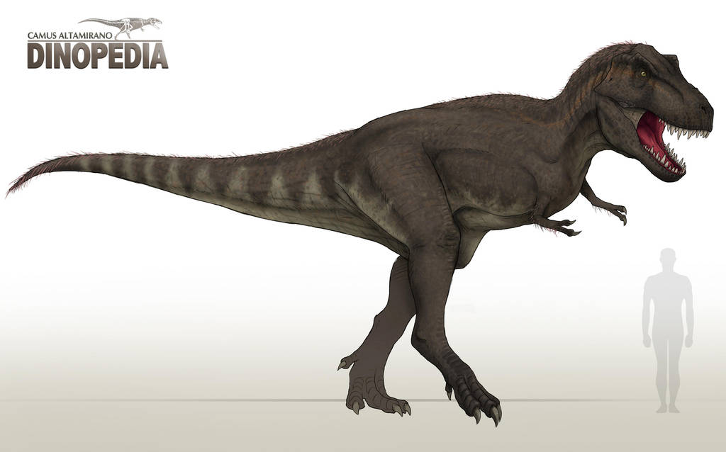 Tyrannosaurus rex by CamusAltamirano