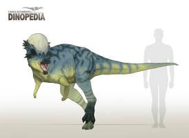 Pachycephalosaurus wyomingensis by CamusAltamirano