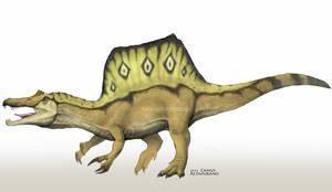 Spinosaurus aegyptiacus by CamusAltamirano