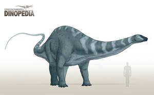 Apatosaurus ajax by CamusAltamirano