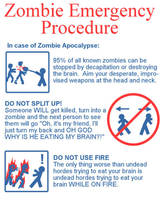 Zombie Apocalypse by RiouMegumi