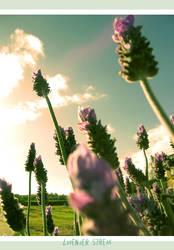 lavender streak by Mek79