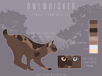 owlwhisker by hopeowl