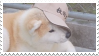 shiba inu stamp #2 by stratosqueer