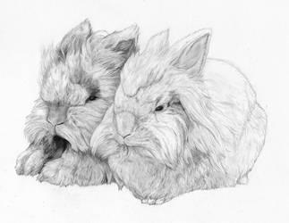 Fluffbun and Zorak by Fyrisvellir