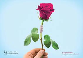 Es-salam hospital by Visual-Micro