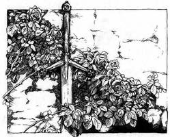 Sword and Roses by Meredyth