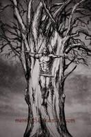 The One-Eyed God by Meredyth