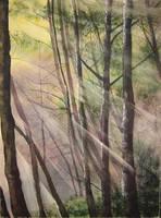 60. Sun Ray Through the Trees by Masasasaki