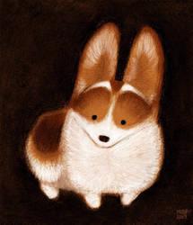 Corgi Pup by sketchinthoughts