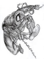 spiderman by graphart