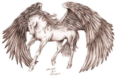 Pegasus by baileymcdoogle