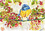 Spring Bird by ioanabart
