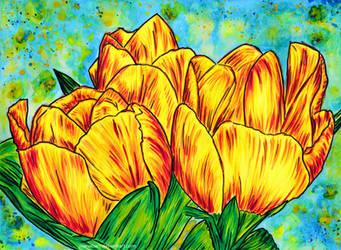 Tulips by ioanabart
