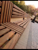 The bench by Numizmat