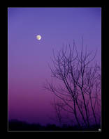 + The Moon by silentglaive