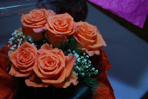 Roses by s3xyyy