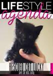 LifeStyle Agenda issue#42nd / Magazine Cover by LifeStyleAgenda