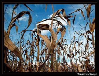 Forgotten Maize by FlowerLisa