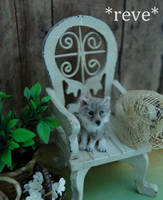 Miniature Handmade Wolf pup sculpture by ReveMiniatures
