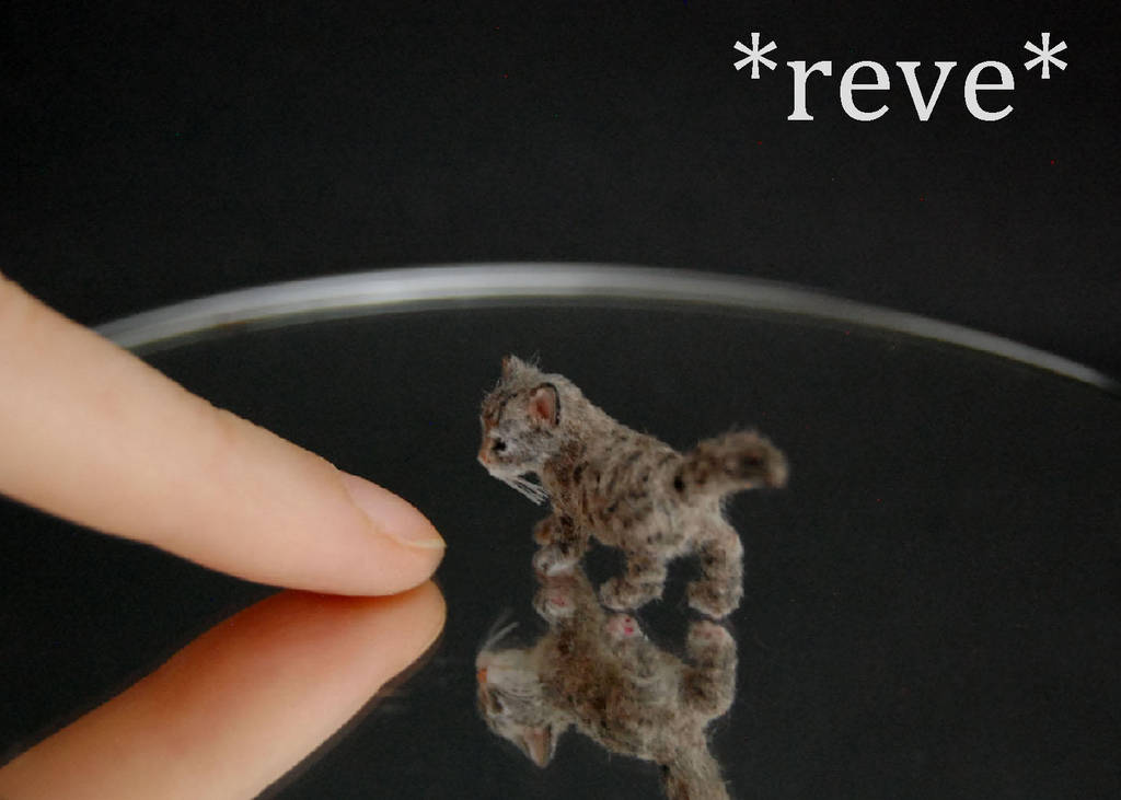 Handmade 1:12 Miniature Kitten Sculpture by ReveMiniatures