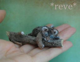 Handmade 1:12 Miniature Sculpture Tiger Cub Sleepi by ReveMiniatures