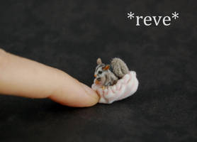 OOAK Handmade Realistic Miniature Sugar Glider Scu by ReveMiniatures
