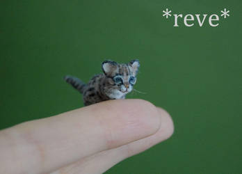 Ocelot Kitten Handmade Miniature Sculpture by ReveMiniatures
