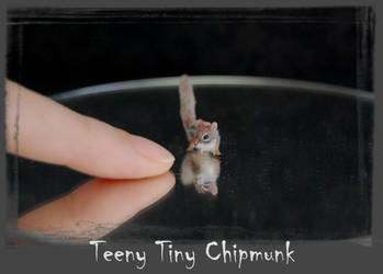 Chipmunk Handmade Miniature Sculpture by ReveMiniatures