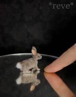 Miniature Cottontail Rabbit Handmade Sculpture by ReveMiniatures