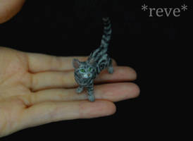 Miniature Classic Tabby Cat Handmade Sculpture by ReveMiniatures