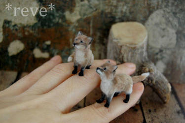 Miniature Red Fox Kits * Handmade Sculpture * by ReveMiniatures