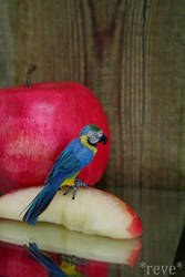 Blue-and-yellow macaw * Handmade Sculpture by ReveMiniatures