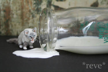 Got Milk? ~ Handmade Miniature Birman Cat by ReveMiniatures