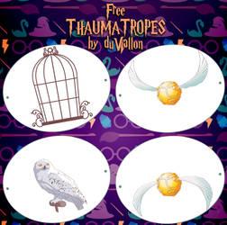 Thaumatropes by duVallonFecit